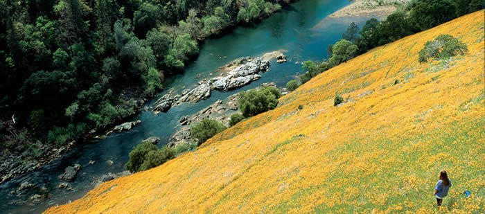 Friends of the River, Tuolumne River Preservation Trust, American Rivers