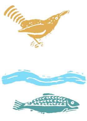 Bird and fish