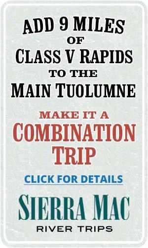 Combination Trip