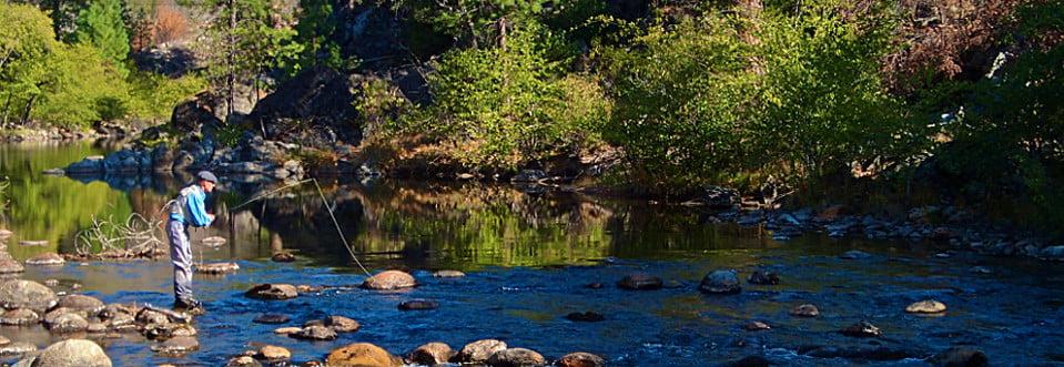 Fly fishing in yosemite sierra mac river trips for Fishing in yosemite