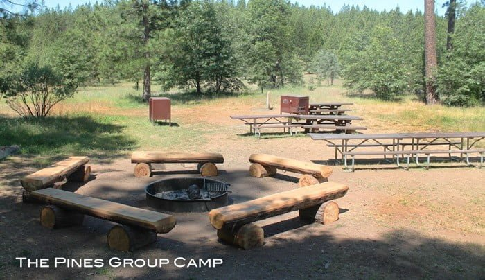 The Pines Group Campsite