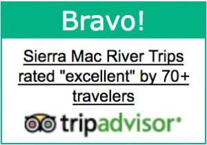 40 Likes on Trip Advisor